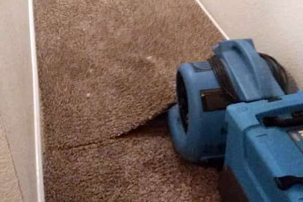 Carpet Cleaning Services Roseville CA