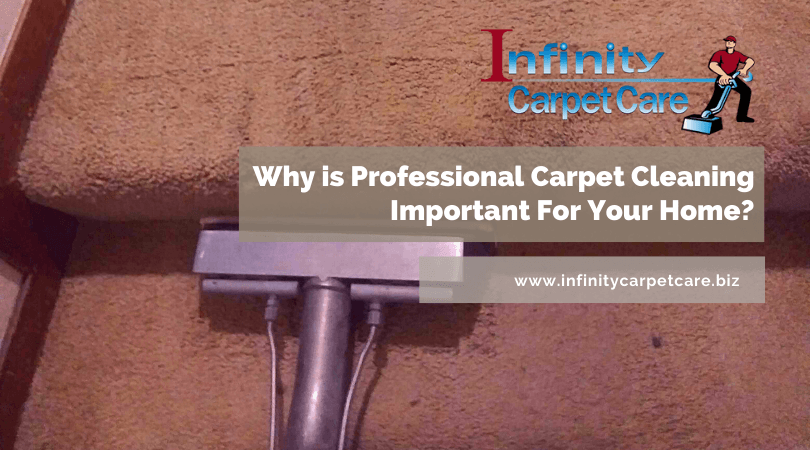 Why Is Professional Carpet Cleaning Important For Your Home?