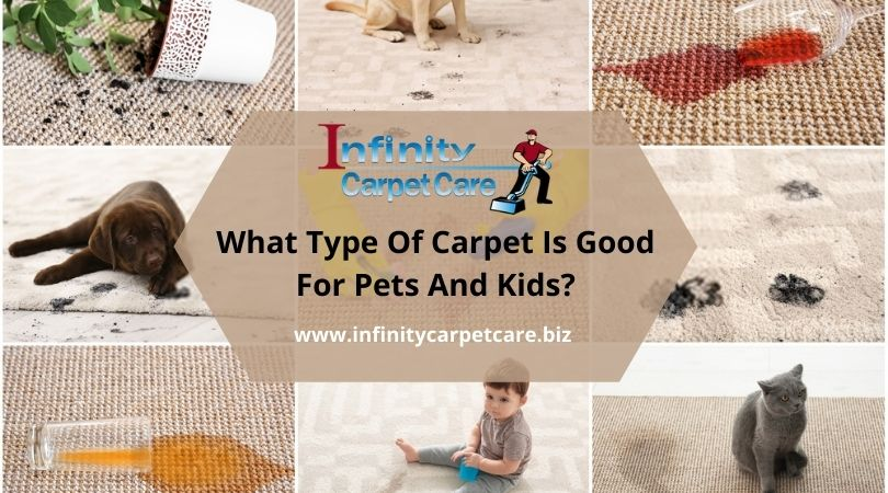 What Type Of Carpet Is Good For Pets And Kids?