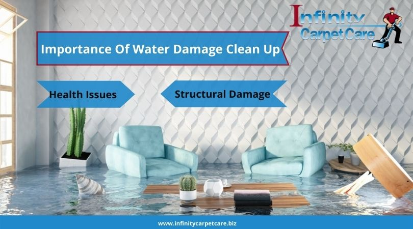Importance Of Water Damage Clean Up