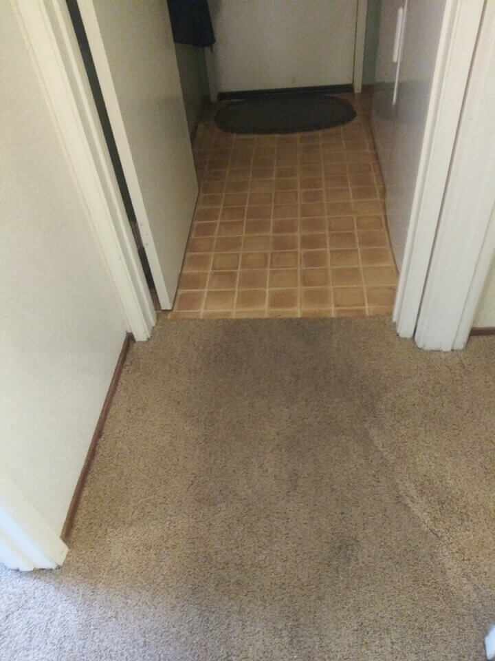 Professional Carpet Cleaning Services Roseville CA