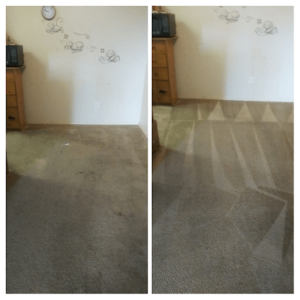 Before After Carpet Cleaning Services in Roseville