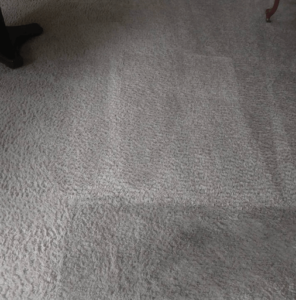 Carpet Cleaning in Roseville at Best Price